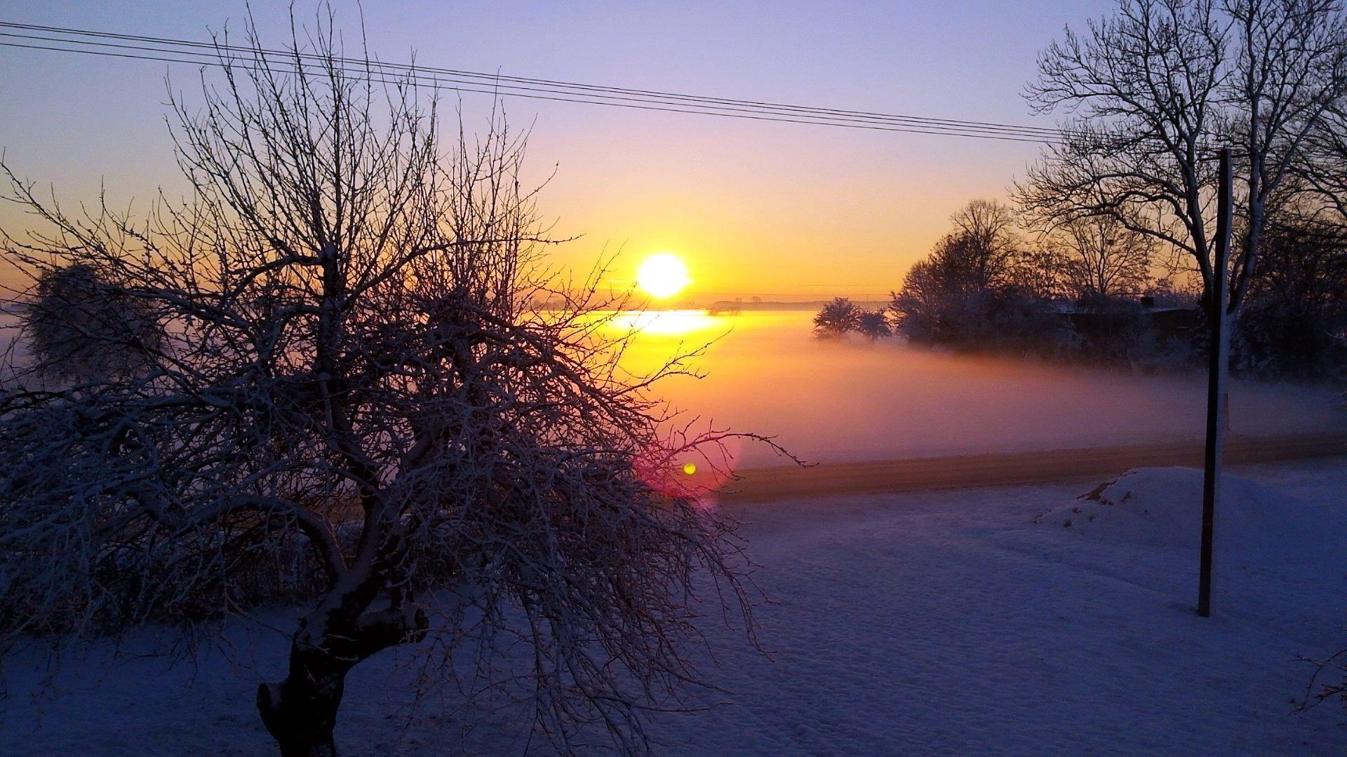 Grzybno zimą - zdj. A.Lewandowska